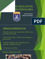 Proyectos Educativos Educación Parvularia (1)