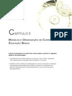 Estruturas Curriculares Transd (4)