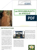 LesBiocarburantsEnAfriquetfc.pdf