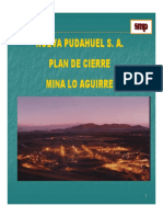 1 Daniel Galleguilloscierre faena.pdf