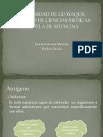 Antigeno - Anticuerpo - Copia