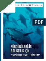 surva.pdf