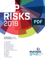 Top Risks 2019 Report