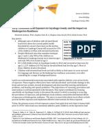 IIC Lead Report