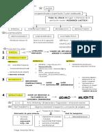 Algoritmos del Shock.pdf