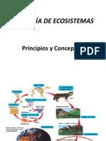 Clase 8. Ecología de Ecosistemas.pptx