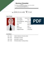 CV Nurnisaa p