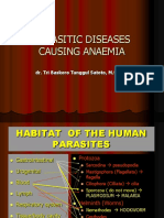 Kuliah Anaemia in Parasitic Diseasse-International 2007