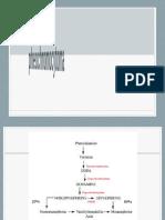 Phaeochromocytoma presentasi