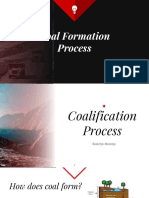 1. Coal Formation Process