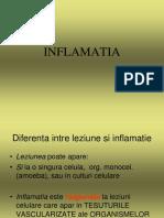 INFLAMATIA 2013