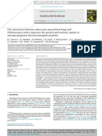 The Interaction Between Arbuscular Mycorrhizal Fungi And Piriformospora Indica Improves the Growth and Nutrient Uptake Inmicropropagation-Derived Pineapple Plantlets