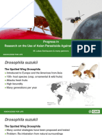 'Progress in Research on the Use of Asian Parasitoids Against Drosophila suzukii', Dr Lukas Seehausen, CABI, and many partners