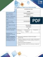 Formato Plan de Trabajo_SISSU Lesuarezu Final