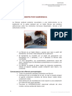 2.1 fibroaracnoiditis