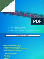 elementedefinisaj.pdf