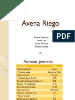 94040199-Presentacion-Avena-Ppt.pptx