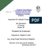 161T0206 Cruz Itza Javier Esteban 3B.