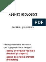 Bacterii Si Ciuperci