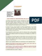 QUE SIGNIFICA ARREPENTIRSE EN CILICIO Y CENIZA.docx