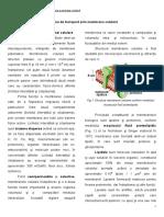 transport-membranar-FMAM.pdf