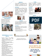 Triptico de Salud Mental en El Adulto Mayor