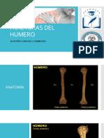Fracturas Del Humero Jpcz