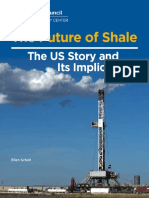 The Future of Shale