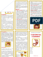 Carcinoma Gástrico - Triptico