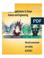 2011-08-11 - ANSYS Applications - Loewenstein & Lockley (1).pdf