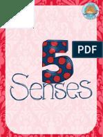 5SentidosDisBMEEP.pdf