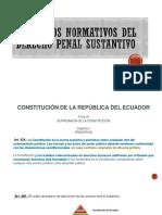 Principios Normativos Del Derecho Penal Sustantivo