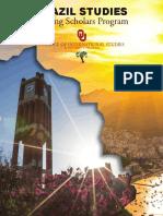BRAZIL STUDIES Visiting Scholars Program (1)