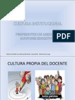 Cultura Institu c Ional
