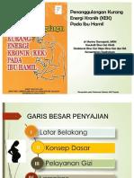 datenpdf.com_buku-pedoman-penanggulangan-ibu-hamil-kekpdf-.pdf
