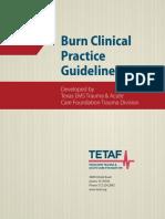 Burn-Practice-Guideline.pdf