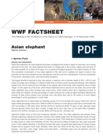 Asian Elephant Factsheet