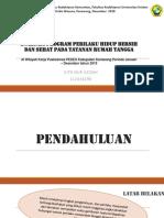 Phbs Gita Nur Azizah