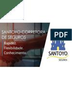 Santoyo Seguros