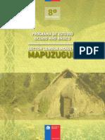 Programa - Lengua Indigena - Mapuzungun - 8º Año