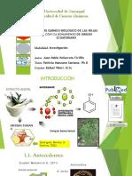 Presentacion de Tesis- Estudio Químico- Biológico de las hojas de Conyza bonariensis de origen ecuatoriano.