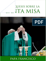 Papa Francisco Catequesis Santa Misa