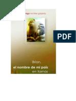 DiegoRamirez-BrianElNombreDeMiPaisEnLlamasseleccion