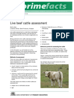 Evolution of Dentition in Cattle Life