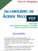 12. Metabolismo de AANN