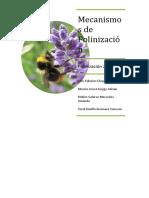 Mecanismos de Polinización