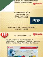 Diapositiva Fabian Guzman
