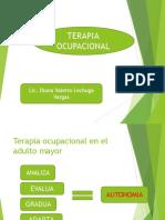 TERAPIA OCUPACIONAL Y RECREATIVA.pptx