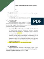 Informe Final - Taludes (2)
