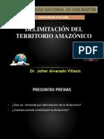 Delimitación Del Territorio Amazónico